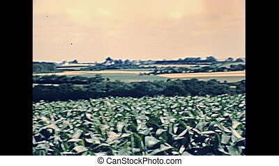 Huisnes Sur Mer country fields in the 70s. Normandy archival...