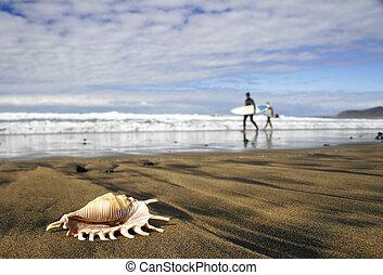 hullámtörés, tengerpart