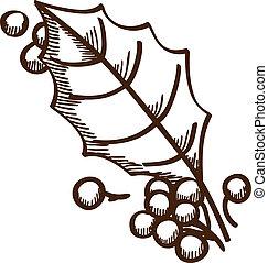 hulst bessen, blad