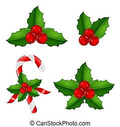 hulst, kerstmis, bes, set