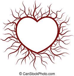 humörer, hjärta, nimbus