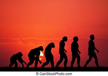 humain, évolution