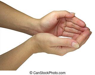 humain, dame, mains, tenue, ton, objet, isolé, sur, blanc