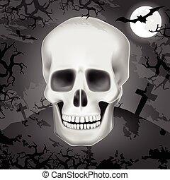humain, halloween, crâne, fond
