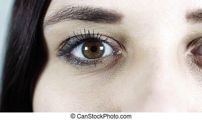 humain, image, femme, close-up., macro, contact oeil, cils, ...