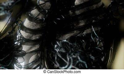 humain, incandescent, poumons, trachée, balayage corps
