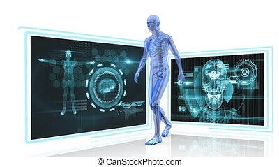 Human anatomy - Digitally generated animation of human ...