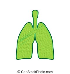 Human anatomy. Lungs sign. Vector. Lemon scribble icon on white background. Isolated