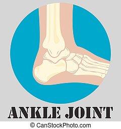 Human ankle joint emblem