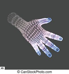 Human Arm. Human Hand Model. Hand Scanning. 3d Covering Skin