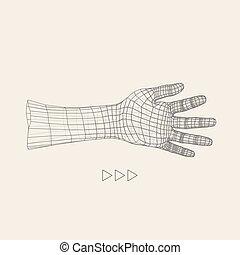 Human Arm. Human Hand Model. Hand Scanning