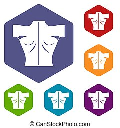 Human back icons set rhombus in different colors isolated on...