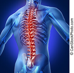 Human-Back-Pain - Human backache and back pain with an upper...