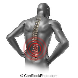 Human back pain in red showing the spinal cord skeleton...