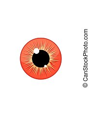 Human blue eyeball iris pupil isolated on white background....