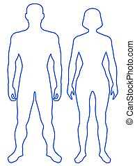 Illustration of the contour human body. Man and woman