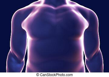 Human body silhouette, illustration
