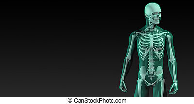 Human Bone Structure Diagram