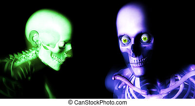 Human Bones 77