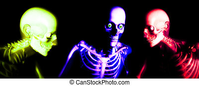 Human Bones - An x ray image of a some man in which you can...