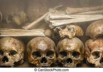 Human bones and skulls, arranged and displayed on a shelf at Tuol Sleng Genocide Museum, the site of a former concentration camp and execution center in Cambodia.
