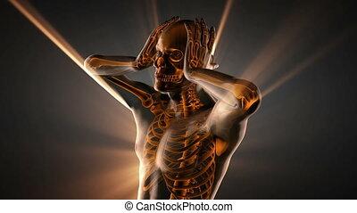 human bones radiographic scan