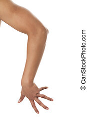 human, braços