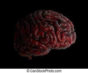 Human brain 3d illustration on black background