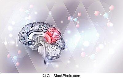 Human brain abstract light blue background