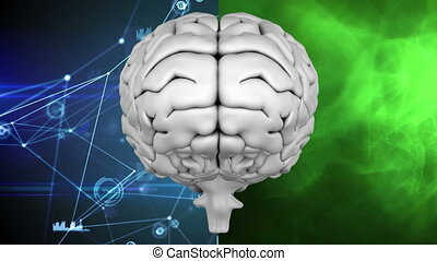 Human brain against background divided in two