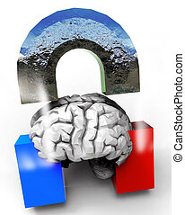 Human Brain and Magnet