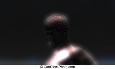 Human Brain Animation