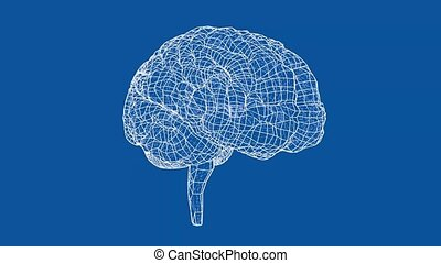 Human brain concept blueprint style. The layers of visible ...