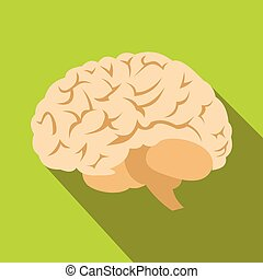 Human brain flat icon with shadow on green background