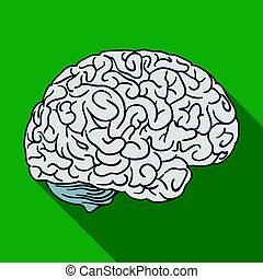 Human brain icon in flat style isolated on white background...
