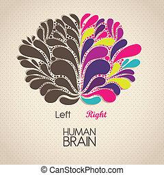 Human brain - Illustration of human brain. Lobes and...
