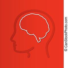 human brain in head