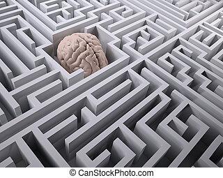 human brain in the labyrinth maze