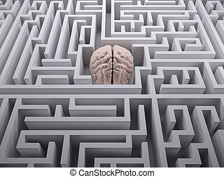 human brain in the labyrinth maze