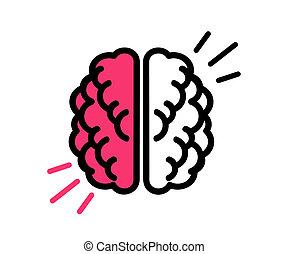 Human brain on a white background.