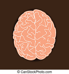 Human brain on brown background