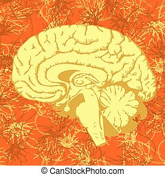 Human brain penetrated by neural communications