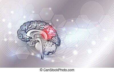 Human brain problems light grey glowing background
