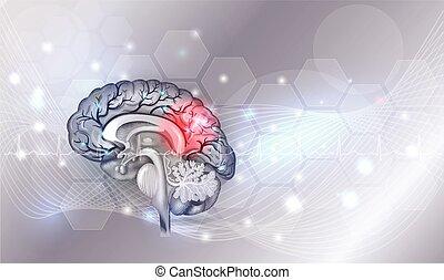 Human brain problems light grey glowing background