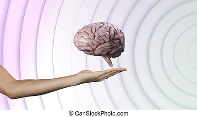 Animation of human brain spinning over hand of woman with multiple white circles pulsating in seamless loop in the background. Medicine research concept digital composite.