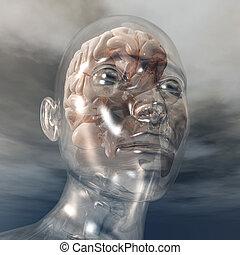 Human Brain - Digital visualization of a human brain