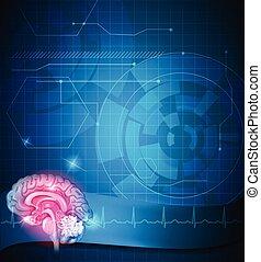 Human brain treatment - Human brain and cardiogram beautiful...
