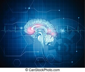 Human brain treatment concept. Abstract blue technology background with cardiogram.