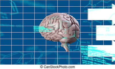 Human brain with arrows - Digital animation of a rotating ...