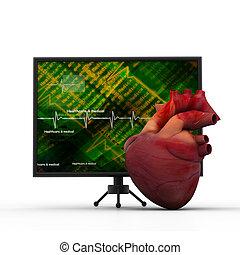 Human brain with ECG monitor